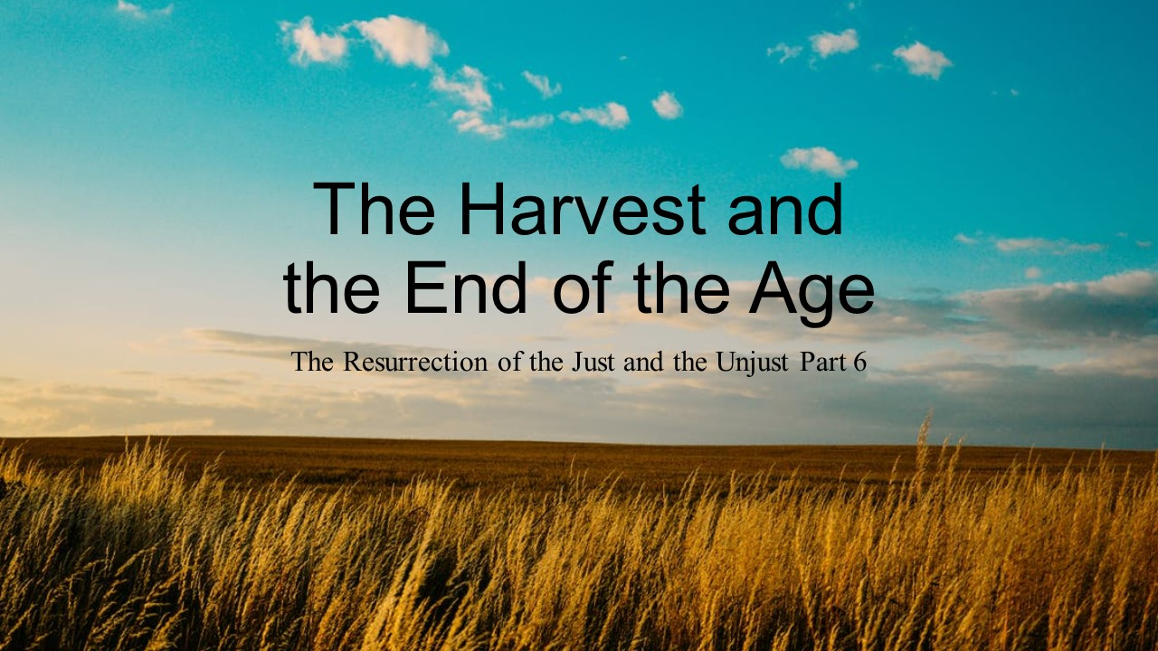 The Resurrection: The Harvest (Part 6)