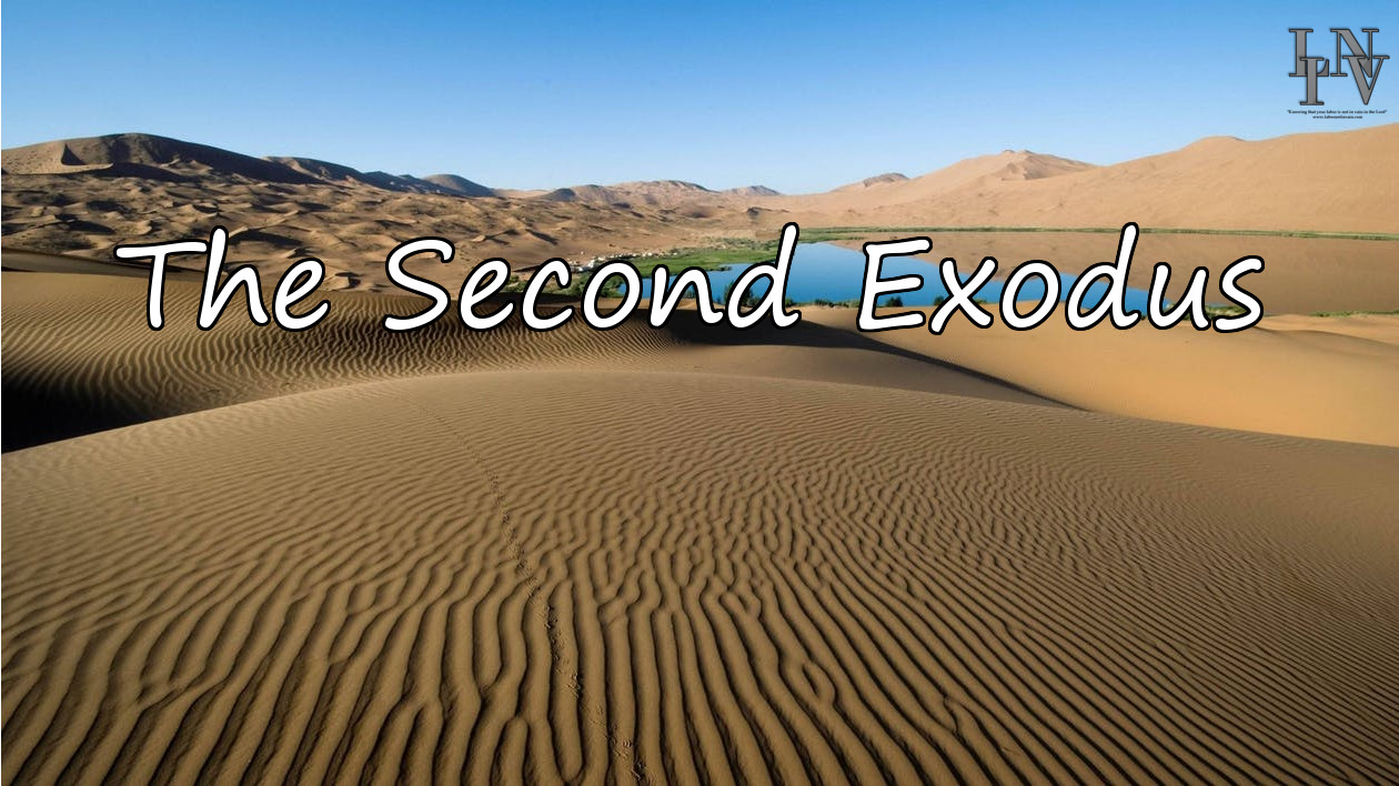 The Second Exodus: Miracles and Signs (Part 4)